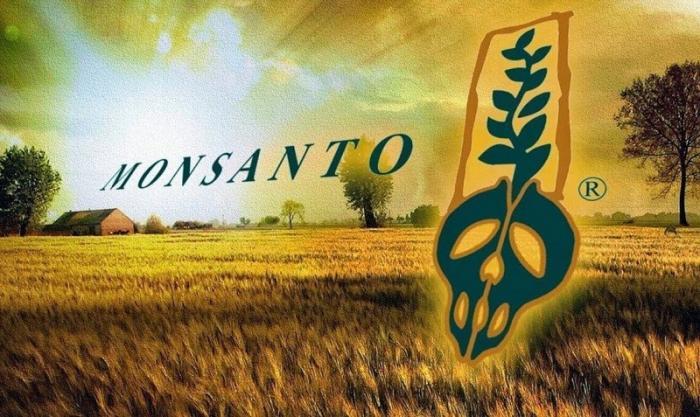 Украина будет распродана ГМО корпорациям. Торг не уместен