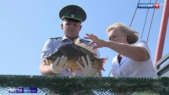 В России вводятся ограничения на любительскую рыбалку: не больше 5 килограммов