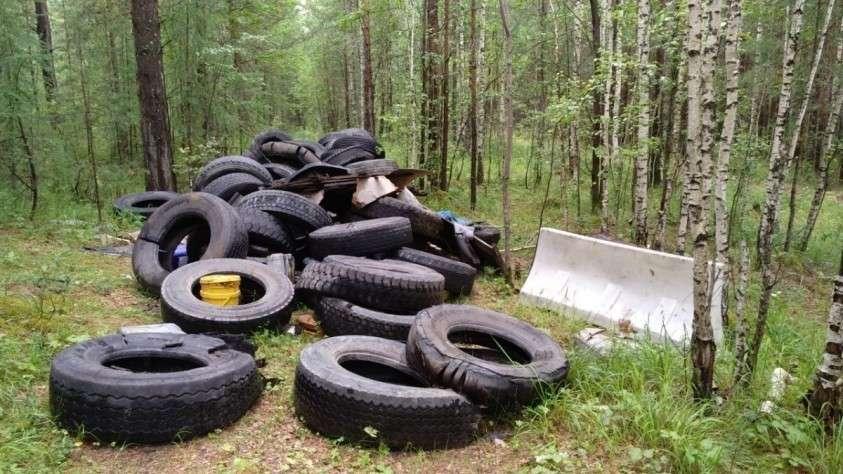 Мало просто перерабатывать отходы, надо менять и собственный менталитет