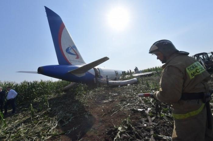 Стало известно об отказе суда закрывать свалку у Жуковского откуда летят чайки