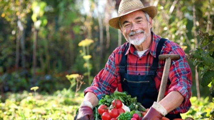Политэкономия паразитов на частном агропримере