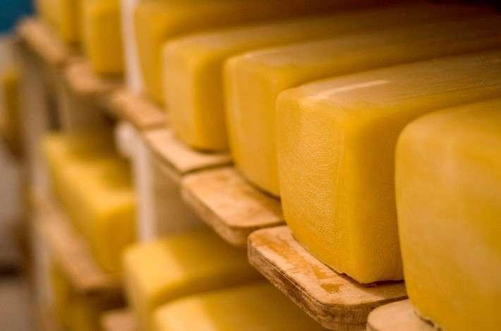 Более чем на 14% вырос объём производства сыров в Алтайском крае
