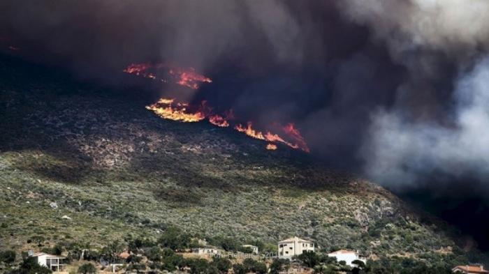 В Греции из-за лесных пожаров эвакуируют туристов отелей