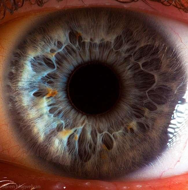 Посмотри в глаза