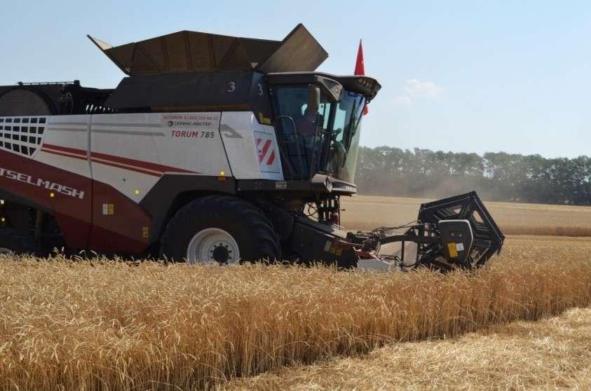 В шести регионах Юга страны урожаи ранних зерновых превысили прошлогодние