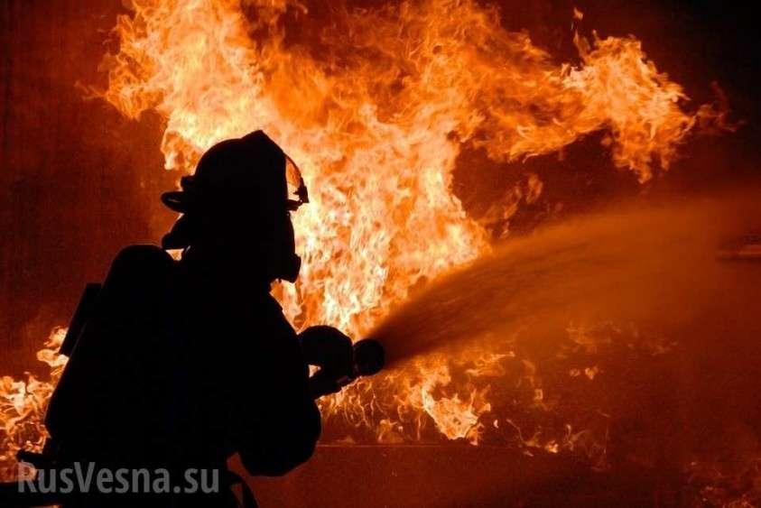 Под Киевом сожгли дом экс-главы Нацбанка Украины Гонтаревой