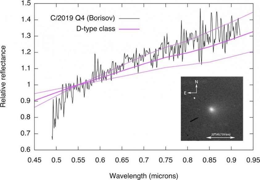Крымский астроном обнаружил первую летящую к нам межзвездную комету: «Объект жутко загадочный»