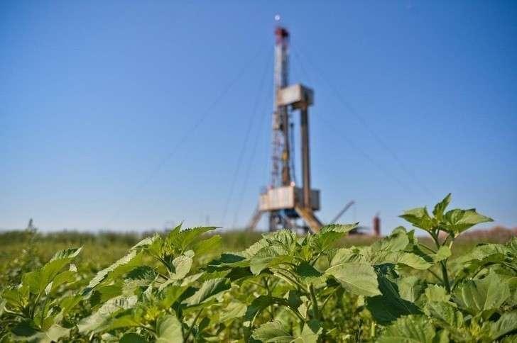 «Роснефть» открыла новое месторождение на шельфе Сахалина