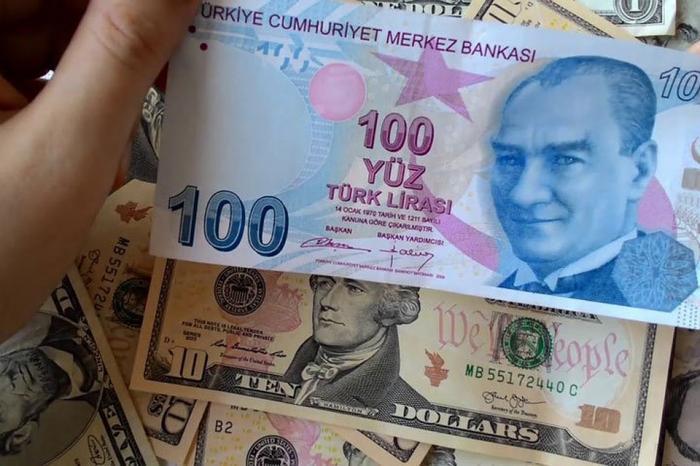 Долларизация. Россия и Турция договорились о расчётах в нацвалютах