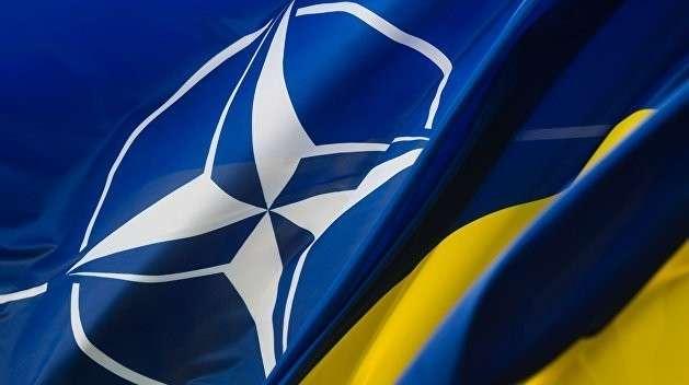 Как Украина стала самой крупной военной базой США и НАТО – краткий обзор