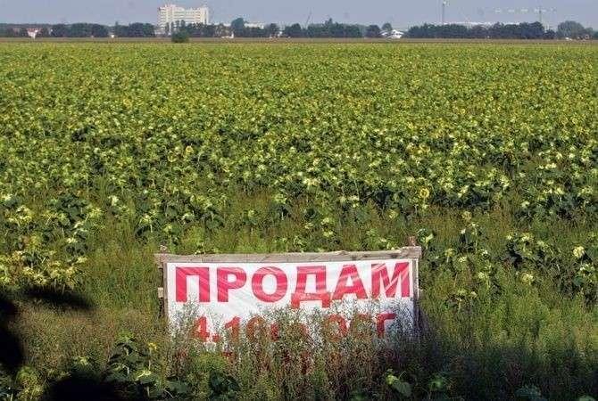 Поля Украины. Фотография: «Комсомольская правда в Украине»