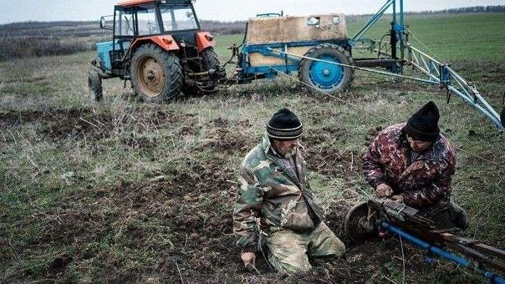 Украинские аграрии. Фотография портала «Новости Украины»