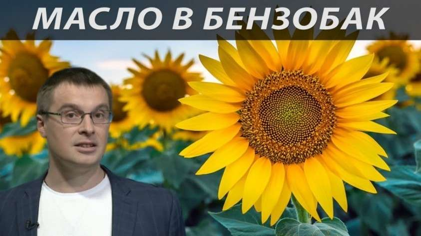 Русское масло – новая нефть