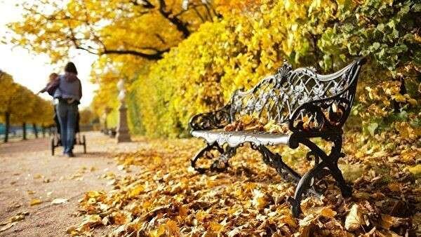 Скамья в парке усадьбы Кусково