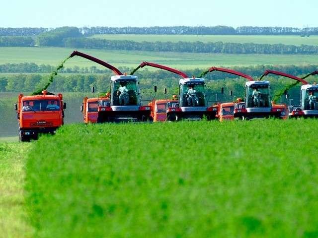 ОНФ: в новых условиях кабмин должен более гибко выстраивать политику поддержки сельского хозяйства