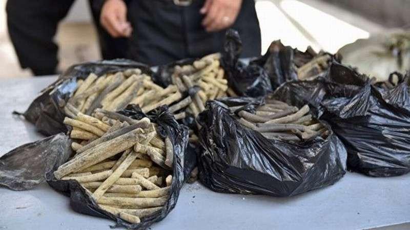 Украину после «евромайдана» завалили наркотиками, а силовики и депутаты в доле
