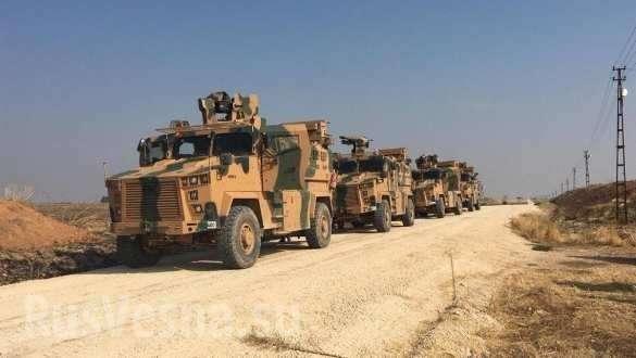 «Тигры», «Тайфуны» и Kirpi: Россия и Турция начали совместные операции в Сирии (+ВИДЕО, ФОТО) | Русская весна