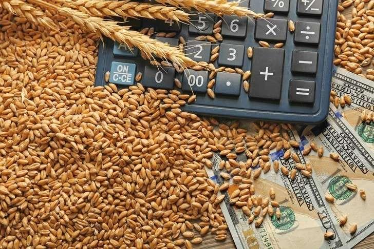Экспорт продукции АПК РФ за 10 месяцев превысил $19 млрд