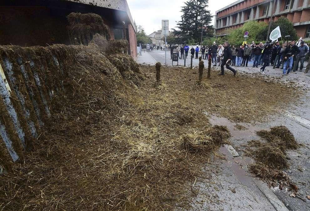 Наиболее креативный ход во время бунта фермеров во Франции — с помощью 30 тракторов они завалили навозом здание департамента сельского хозяйства, а также местной мэрии