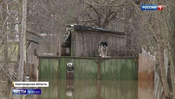 Наводнение в Новгородской и Тверской областях, эвакуируют людей