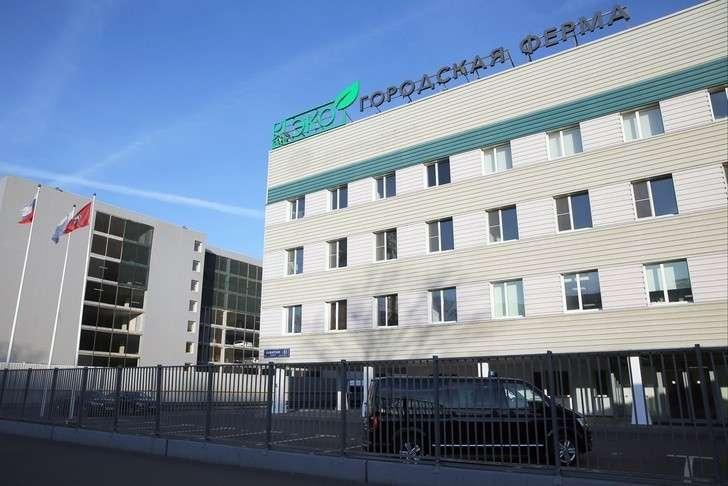 В Москве открылась крупнейшая в мире вертикальная теплица