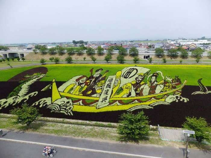 Картины на рисовых полях