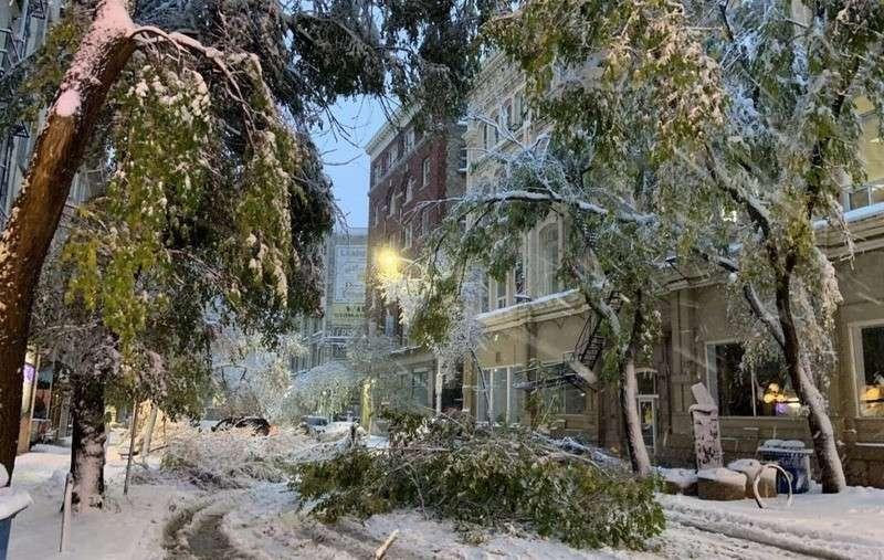 Пока Канада ждёт глобального потепления, аномальные снегопады уничтожают её урожаи