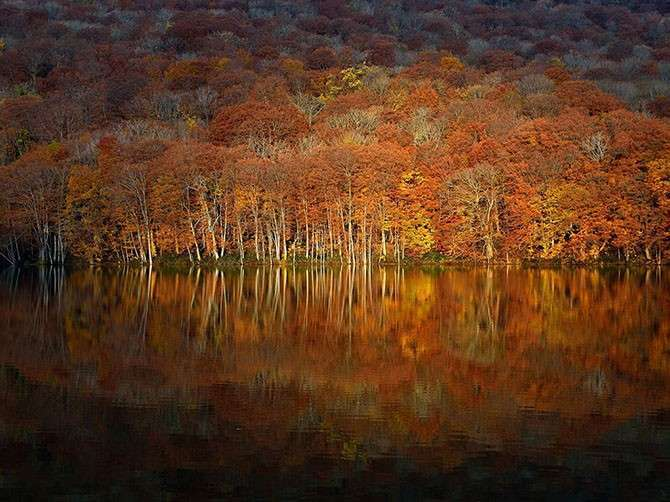 Лучшие фотографии National Geographic октября 2014