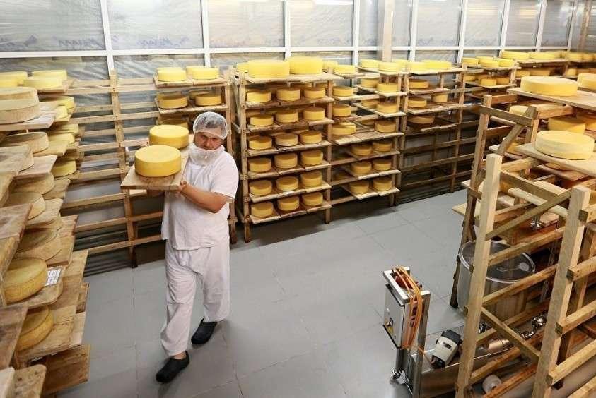 Россия вошла в тройку по производству сыра в мире