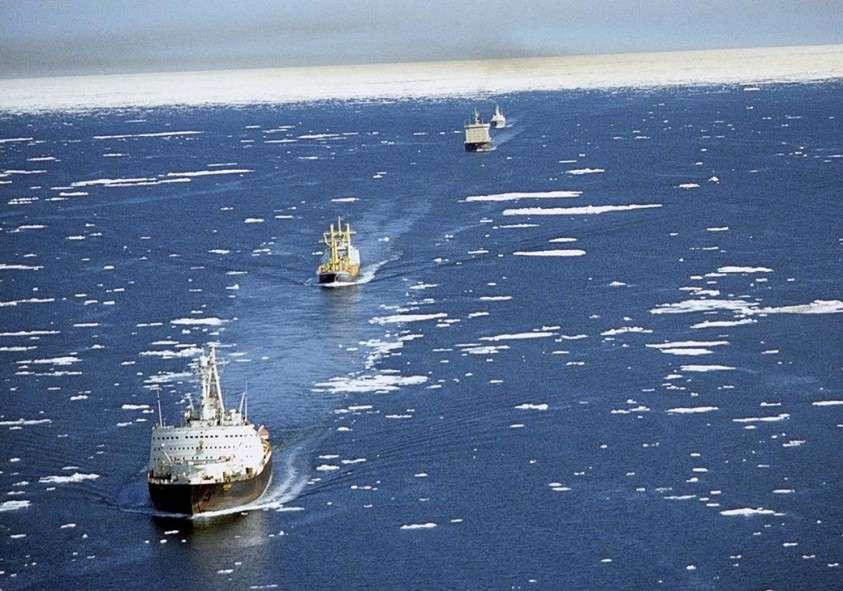 Торговый путь великого раздора: Северный морской путь расколол НАТО
