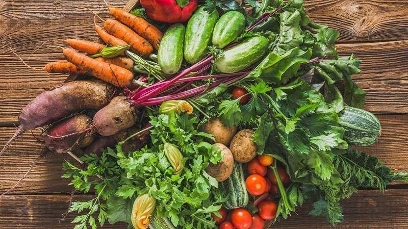 Урожай овощей открытого грунта на Ставрополье в 2019 году увеличился на 33%