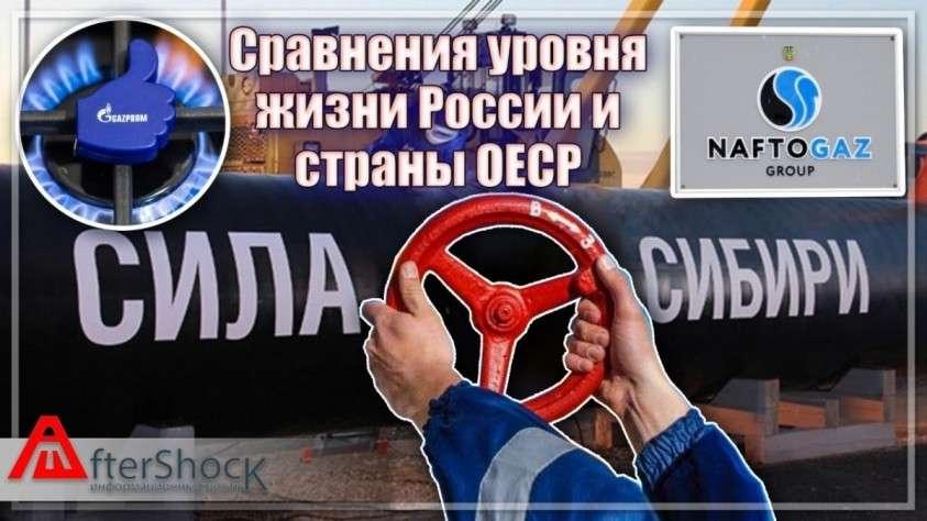 Сравнения уровня жизни России и страны ОЕСР