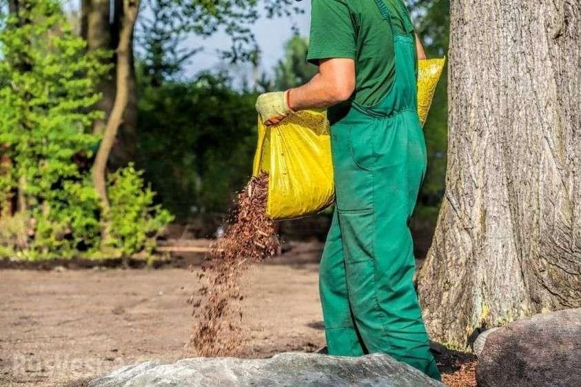 Их нравы: в США из покойников будут делать компост
