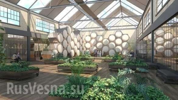 Их нравы: в США из покойников будут делать «экологический» компост | Русская весна