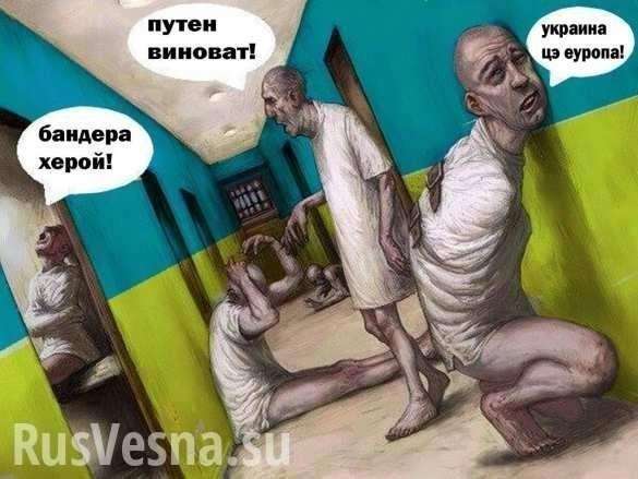 Как выглядят днепропетровские каратели попавшие в психбольницу | Русская весна