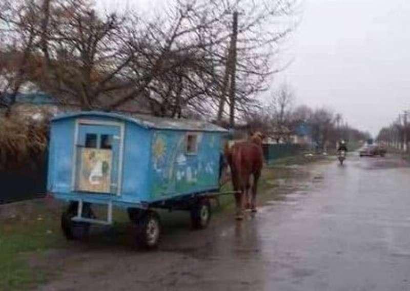 Будущее Украины – подводы и конюхи вместо автобусов