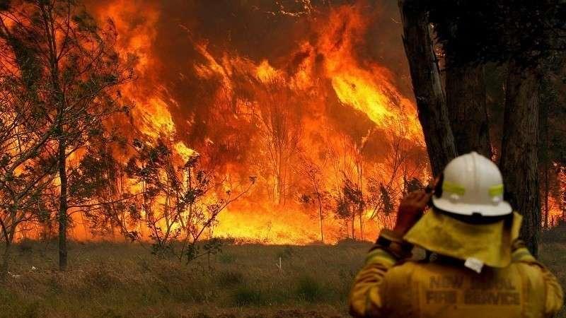 Лесные пожары в России? Да вы на Австралию посмотрите