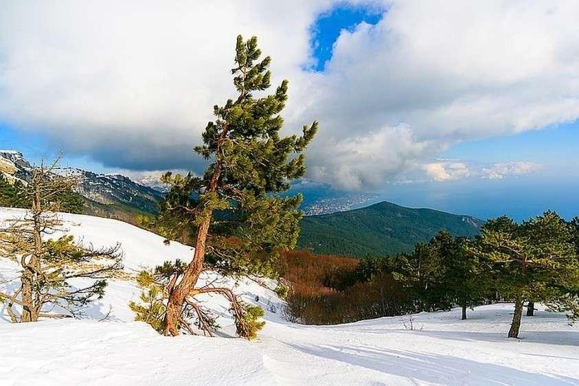 Крым прекрасен и летом, и зимой. Фото: Shutterstock
