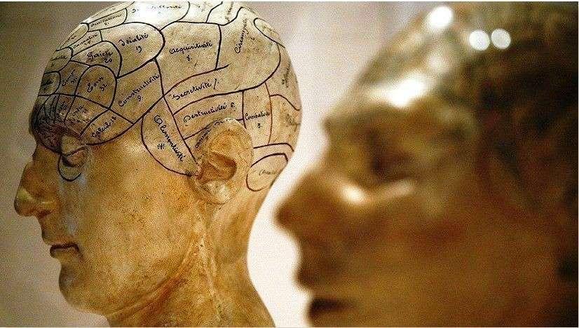 Английские учёные заинтересовались разумом