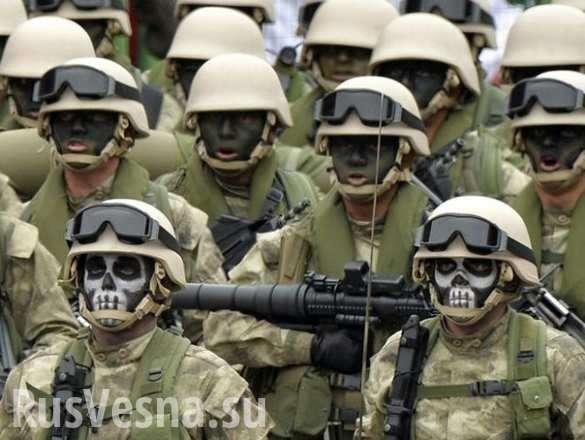 Наёмные убийцы из ЕС едут захватывать Донбасс – признания европейского нациста (ВИДЕО) | Русская весна