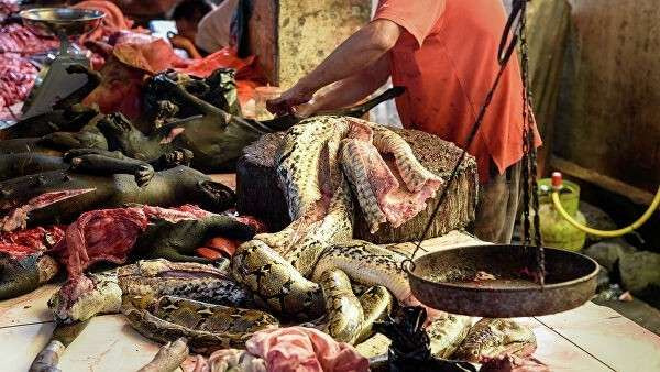 Мясо змеи на традиционном рынке в Индонезии