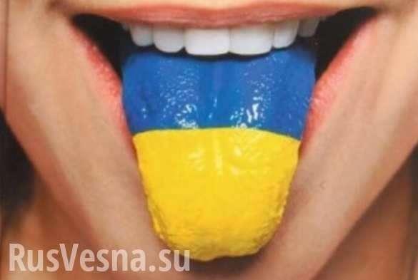 Мова калечит: родители школьников рассказали о больших проблемах | Русская весна