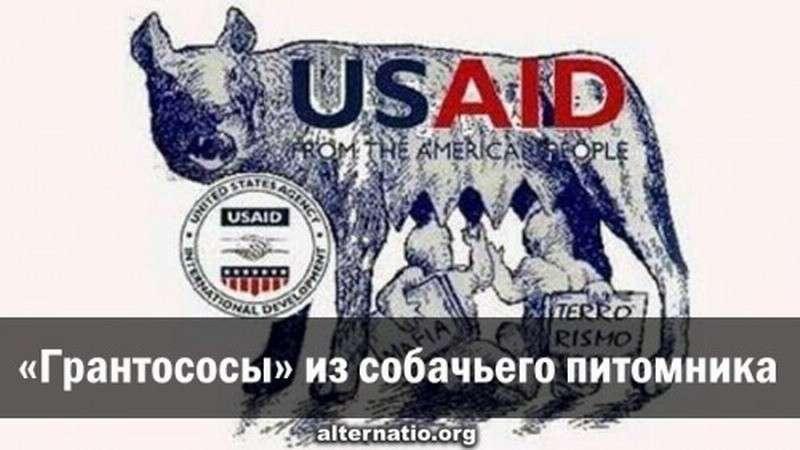 Украинские «грантососы» из собачьего питомника Сороса