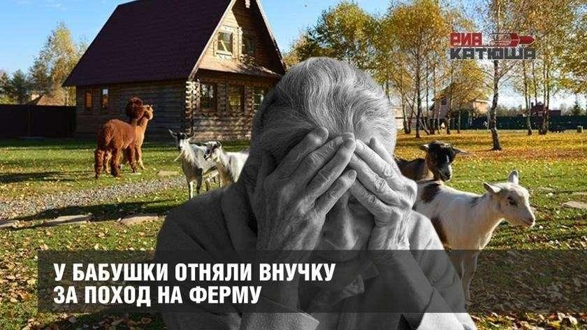 Ювеналы отобрали у бабушки внучку за поход на ферму