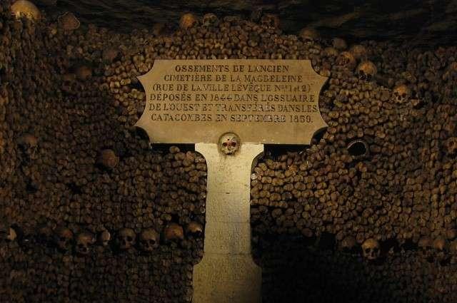 Что за стену из человеческих костей и черепов нашли в Бельгии?