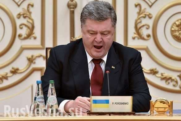 Скандал с сыном Порошенко – замкнутый круг лжи и лицемерия | Русская весна