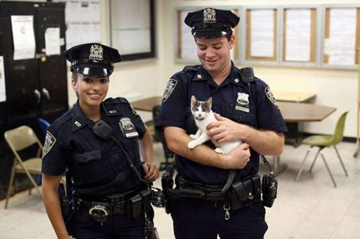 Муж и жена не могут работать в одном полицейском участке / Фото: mbk.news