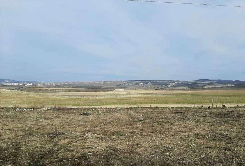 В Республике Крым реализуется проект «Лавандовый пояс Тавриды»
