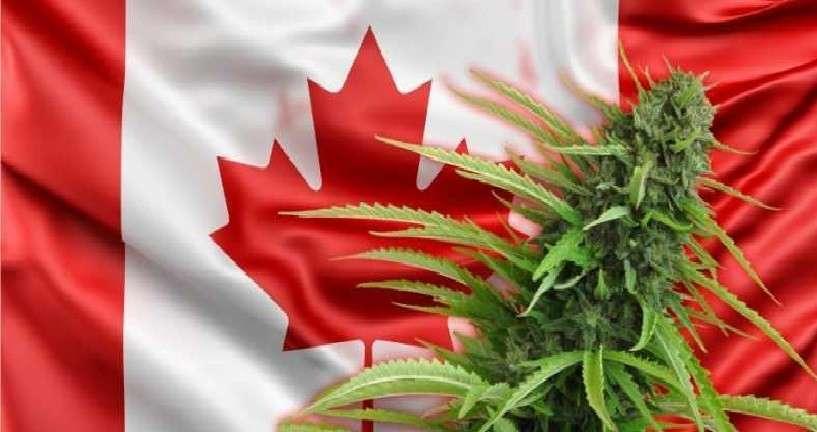 Это в России проблемы? Да Вы на «процветающую» Канаду посмотрите!