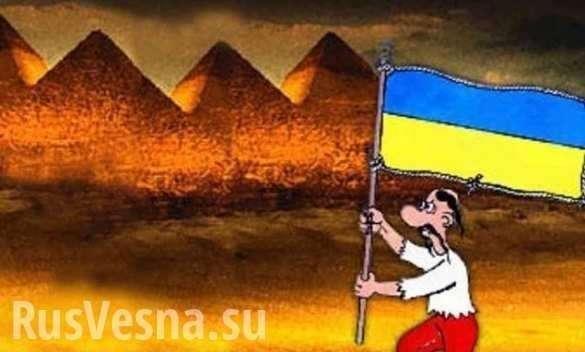 Десятки тысяч украинцев брошены на произвол судьбы в Египте | Русская весна